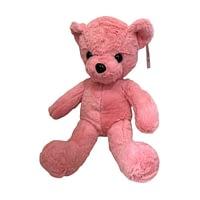 Urso de Pelúcia Rosa