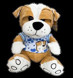 Cachorro de Pelucia com Camiseta